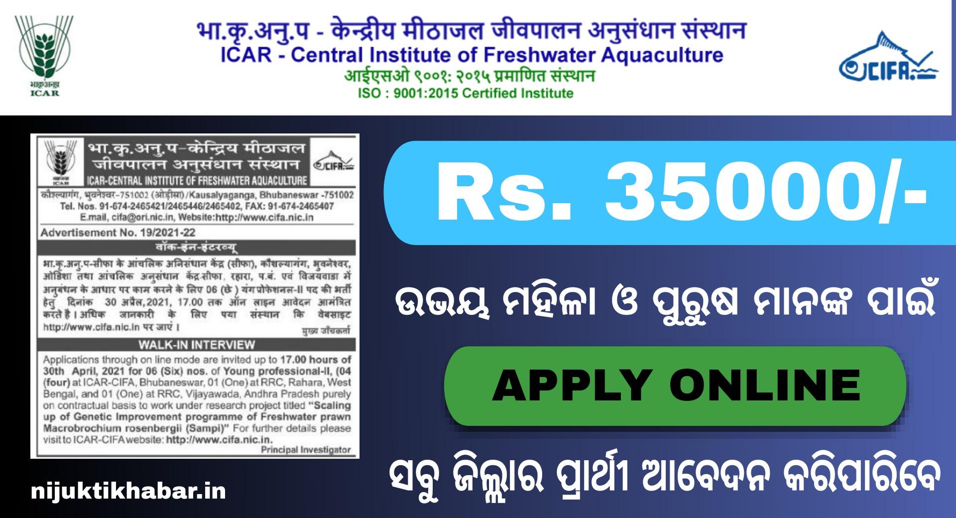 CIFA Young Professional Recruitment 2021 – Jobs in Odisha